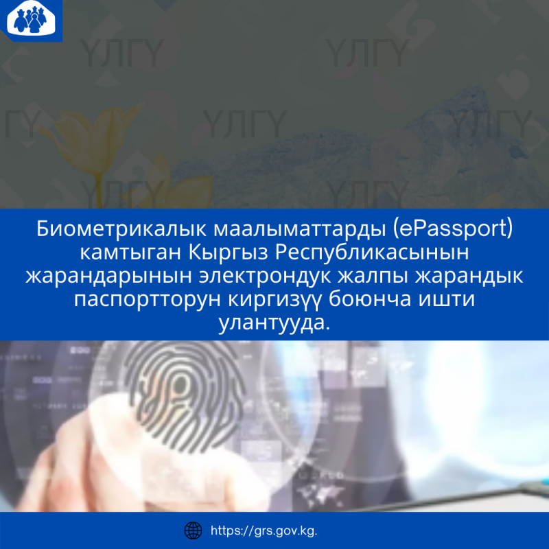 Электрондук жалпы жарандык паспортторун киргизүү боюнча ишти улантууда.